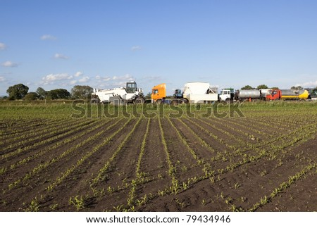 a view across a field of young corn plants to a fleet of highway resurfacing vehicles under a blue sky - stock photo