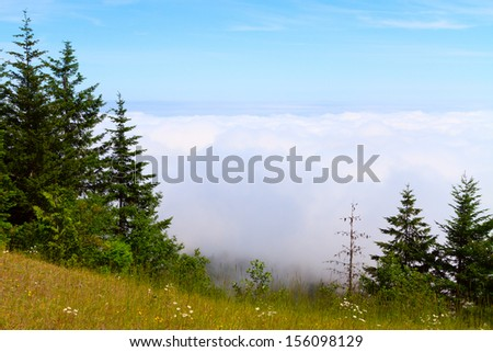 A view down from mountain ridge to the area fully covered by white clouds. North-western Oregon, USA
