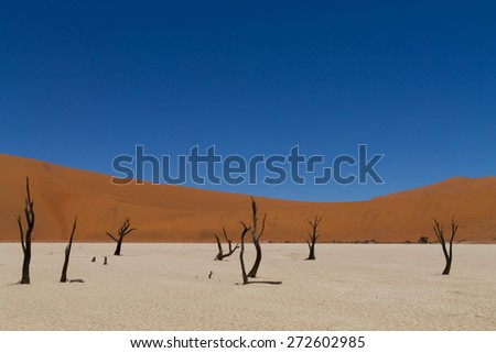 A view from Dead Vlei, Sossusvlei Namibia - stock photo