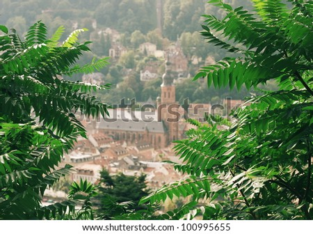 A View from Philosopher's Path in Heidelberg, Germany - stock photo