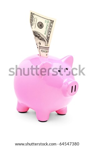 A view of a pink piggy bank and 100 US dollar in it isolated on white background - stock photo