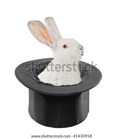 A view of a rabbit in a top hat isolated on white background - stock photo