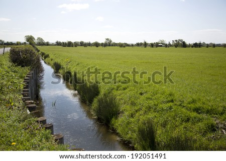A view of a Somerset rhyne with a line of wooden post barriers protecting the bank from damage - stock photo