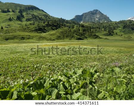 A view of Alpine mountains surrounding the village Schocken in Bregenzerwald, region Vorarlberg, Austria - stock photo