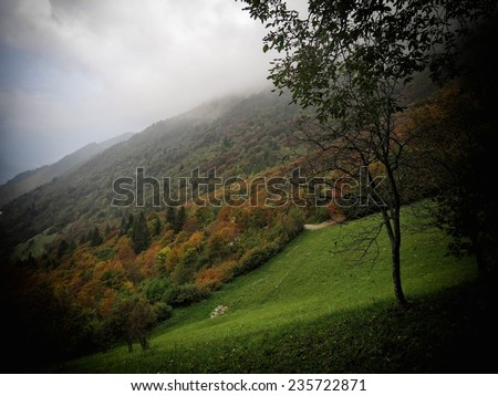 a view of autumn colors