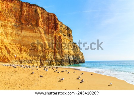 A View of Benagil beach in Algarve region, Portugal, Europe - stock photo