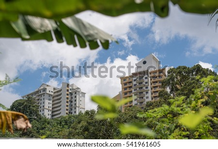 a view of condominium from a greenery forest