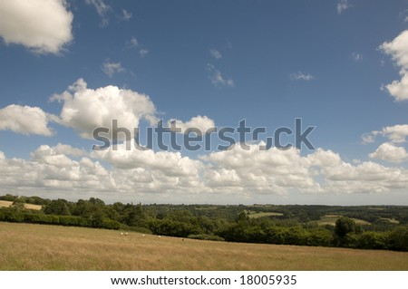A view of farmland in Kent in summer