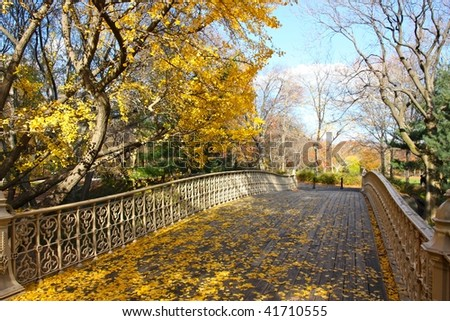 A view of the Central Park in New York in November - stock photo