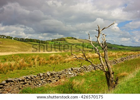 A view of the Northumberland countryside near to Hadrians Wall and Crag Lough in Spring, Northumberland National Park, England UK - stock photo