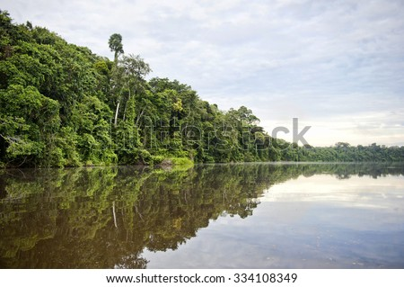 A view of the river at Tambopata Province in the Amazon. - stock photo