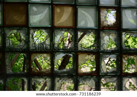 a view of the trees through the broken glass blocks