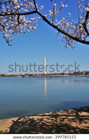 A view of the Washington Monument across the Tidal Basin with cherry blossom trees in the foreground - stock photo
