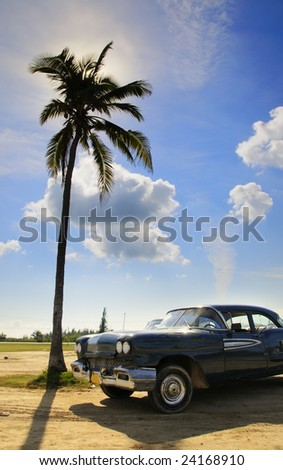 A view of vintage classic car and coconut palm under tropical sky - stock photo