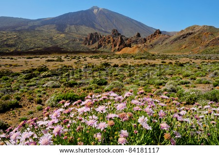 A view of volcano Mount Teide, in Teide National Park, in Tenerife, the highest elevation in Spain - stock photo