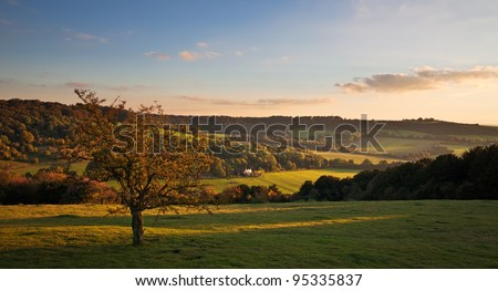 A view over a valley in the Chiltern landscape at sunset.