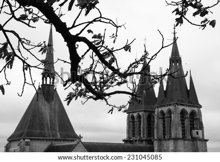 A view through the branches of chestnut tree on the Saint-Nicolas church in the medieval town Blois in Loire valley ( Val de Loire, France) Selective focus on the twigs. Aged photo. Black and white. - stock photo