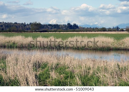 A view with river and snow mountain. - stock photo
