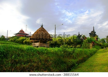 A village in Bali which is part of an Ecotourism network because of it's coffee plantations. Kiadan Pelaga, Bali, Indonesia.
