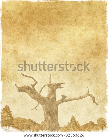 A vintage tree on paper with stains and scratches.