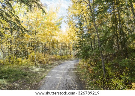 A walk through a park in Edmonton Alberta showing the colors of Fall - stock photo