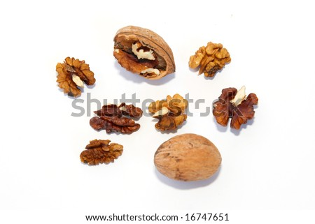 A walnuts isolated on white.