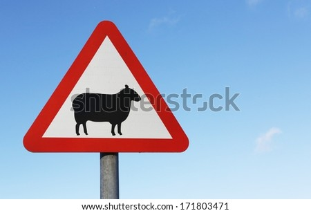 A warning of sheep on the road British sign with copy space.. - stock photo