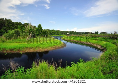 a Water bend at Paynes Prairie Preserve State Park - stock photo