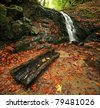 A waterfall and log in autumn in a temperate rain forest - stock photo