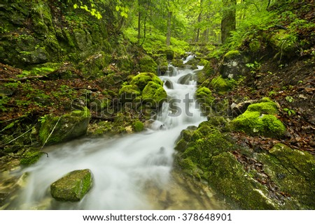 A waterfall in a lush gorge in Slovensky Raj in Slovakia. - stock photo
