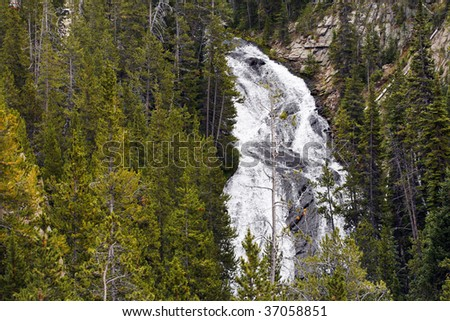 A waterfall in the forest of Yellowstone National Park. - stock photo