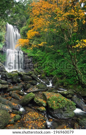 A waterfall in the middle of an autumn forest. - stock photo