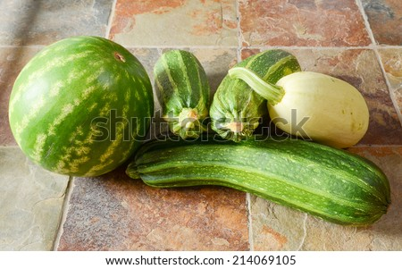 A watermelon, three zucchini and a winter squash on a slate tile floor - stock photo