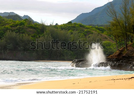 A wave-driven blowhole on the north shore of Kauai, Hawaii