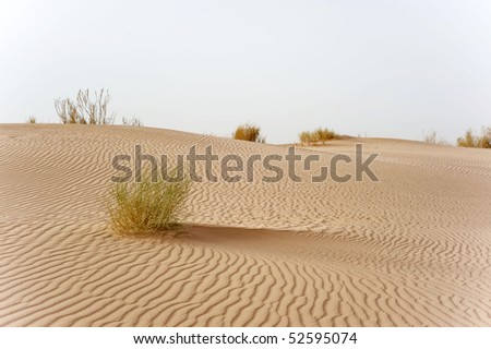 A waved desert with nobody in Jordan - stock photo