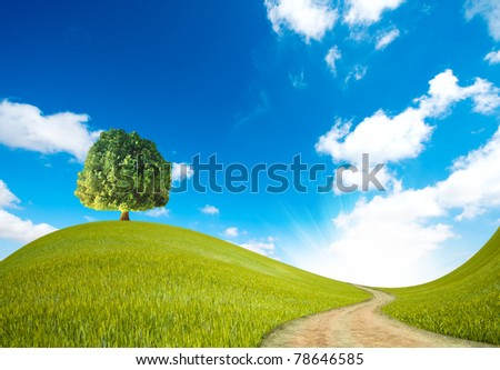 A way in the green landscape - stock photo