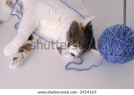 A white cat with brown spots is entangled in a ball of yarn.