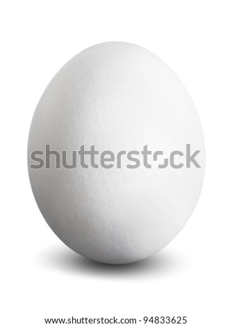 a white egg isolated before white background