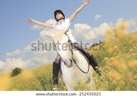 A white horse on yellow flower field with a rider. - stock photo