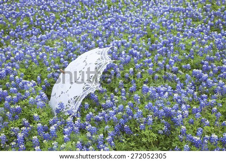A white lace parasol sits in a field of Texas bluebonnets during spring - stock photo