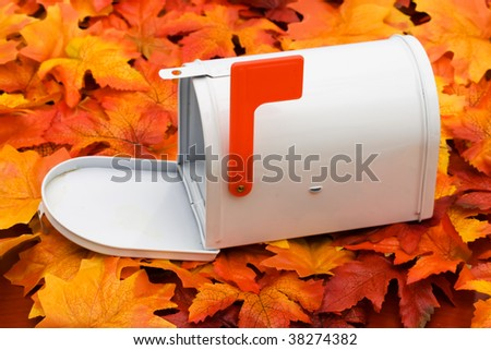 A white mailbox sitting on a fall leaf background, mailbox - stock photo