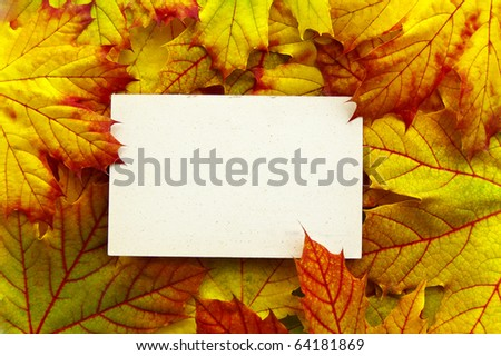 A white paper on a background of autumnal leaves - stock photo