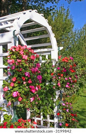 A white wooden garden arbor covered with flowers. - stock photo