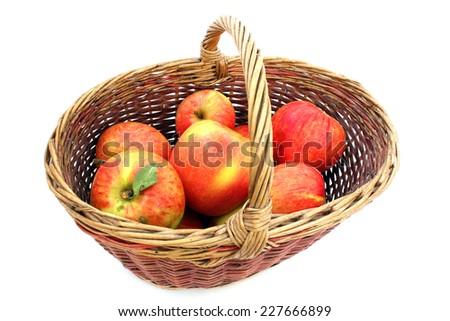 A whole basket of apples varieties autumn-striped