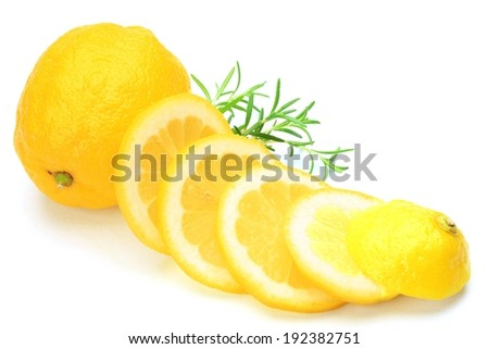 A whole lemon with round lemon slices leaning on it and a green sprig behind. - stock photo