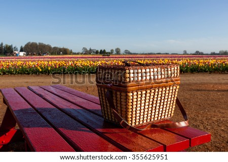 A wicker picnic basket sitting on a red table at a farm with rows of colorful tulip blooms in the background.