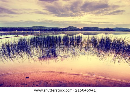 A wide angle shot of reeds by the shoreline of a beach on a tranquil lake with a dock in the background at sunrise.  Filtered to give vintage retro look.  - stock photo