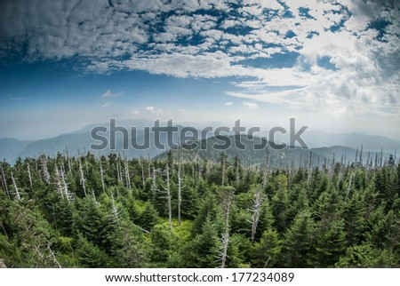 A wide view of the Great Smoky Mountains from the top of Clingman's Dome - stock photo