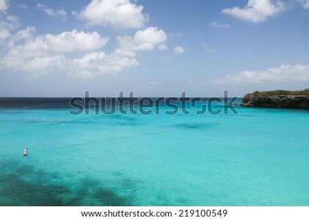 A wiemerar swimming in the ocean at Jan Theil Beach on Curacao a Caribbean Island in the Dutch Antilles - stock photo