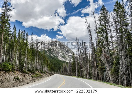 A winding road through the evergreens toward a lone mountain peak with a bright blue sky and fluffy white clouds. - stock photo